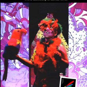 Die mini Zauberflöte | DVD